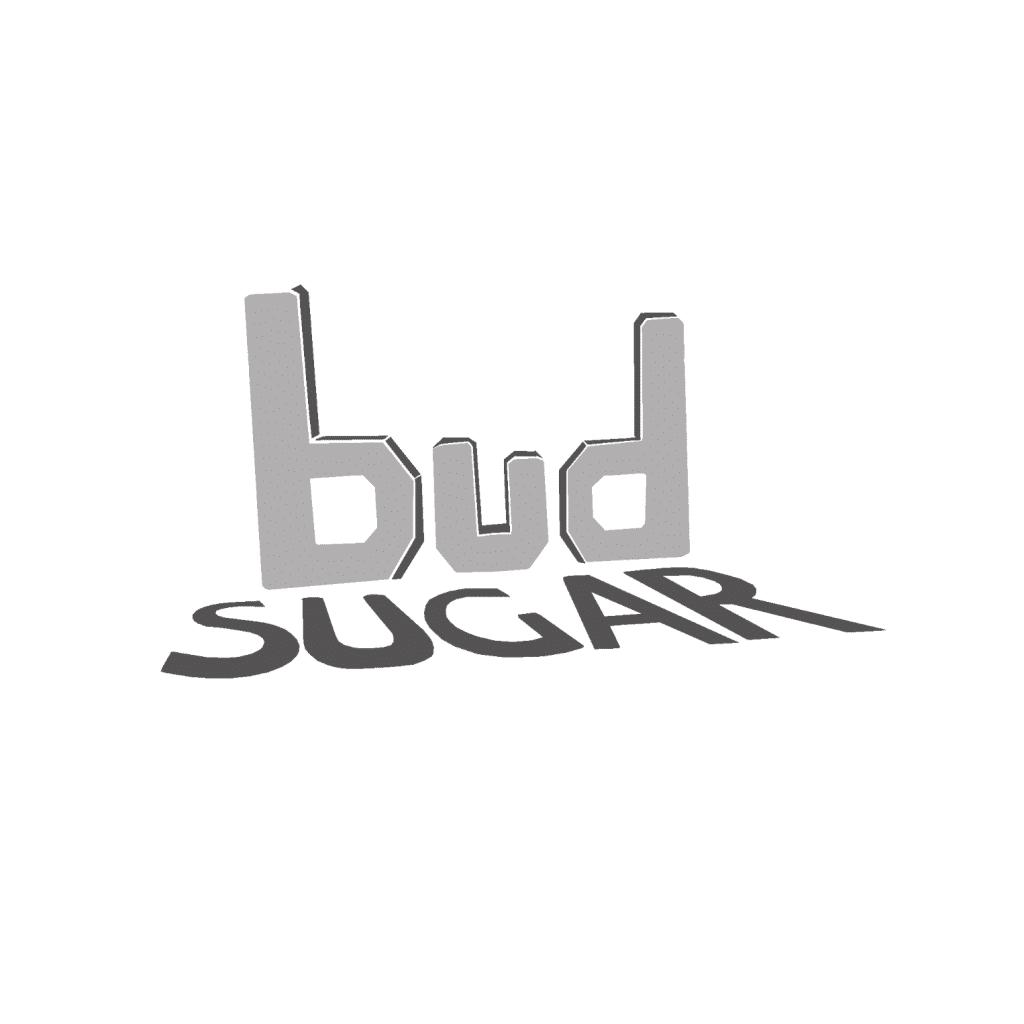 Bud Sugar Logo Portfolio Image