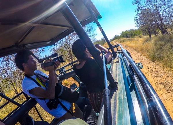 Filming Tanzania Safari Image